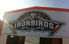 IronBirds Game